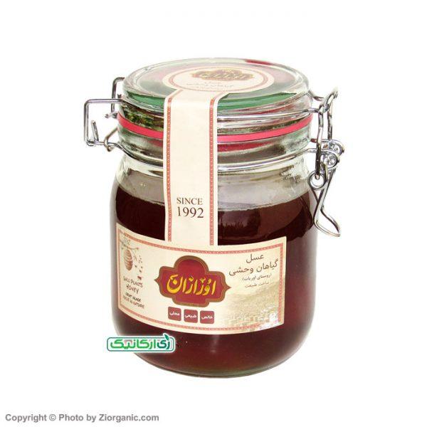 عسل گیاهان وحشی ارگانیک - زی ارگانیک