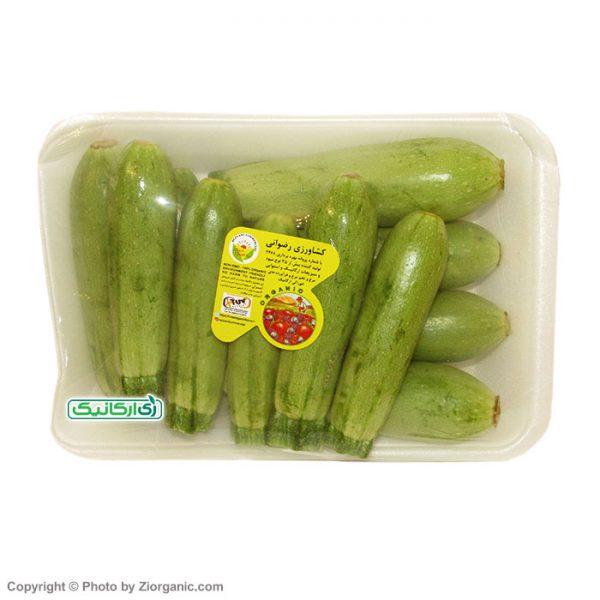 کدو سبز ارگانیک - زی ارگانیک