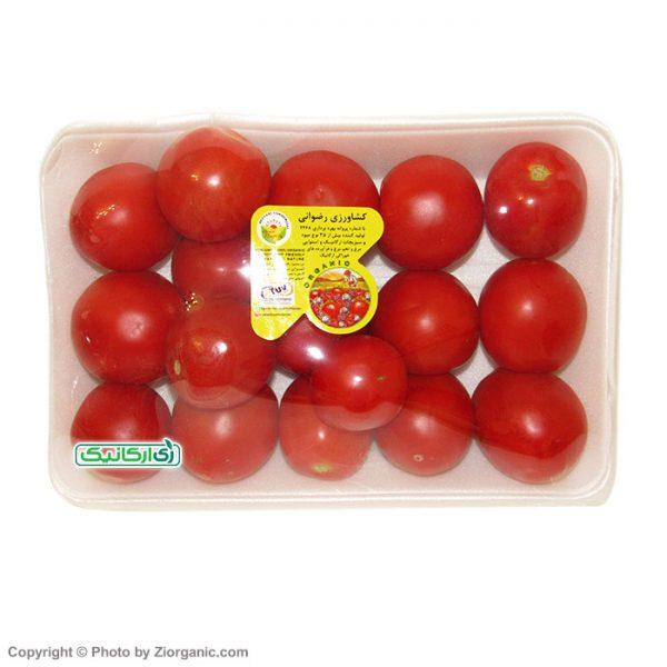 گوجه فرنگی ارگانیک - زی ارگانیک