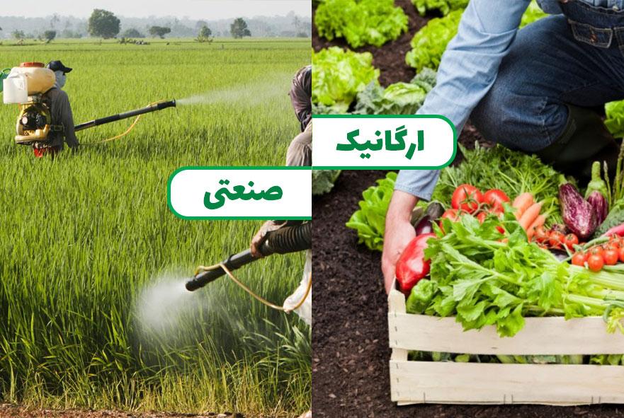 گرانی محصولات ارگانیک یا ارزانی محصولات صنعتی؟!